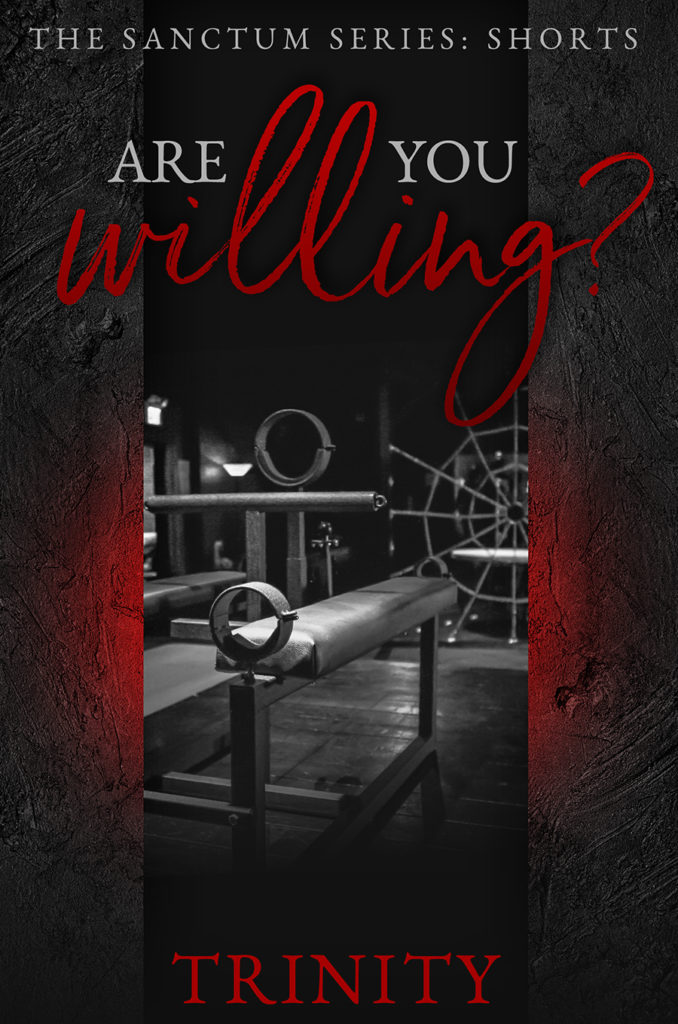 Book Cover: Are You Willing? - A Sanctum Short